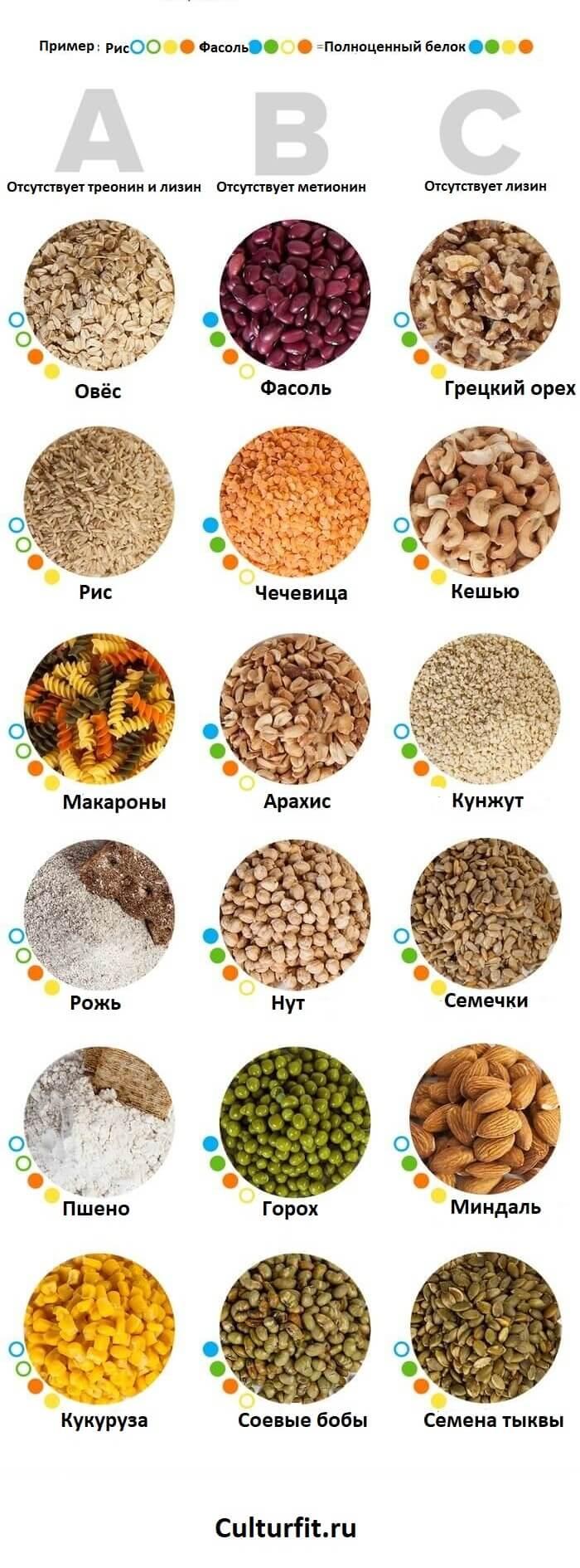 Комплементарные белки